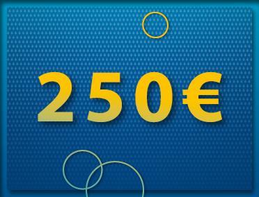 Mehrzweckgutschein 250,00 €